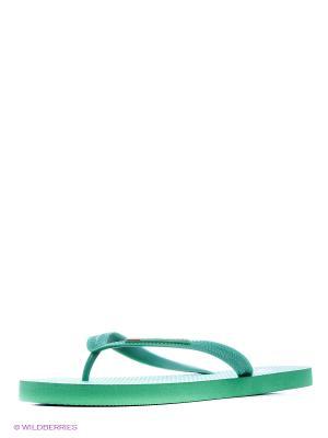 Шлепанцы U.S. Polo Assn.. Цвет: зеленый