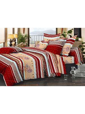 Комплект постельного белья, слим-сатин - 200*220, 2сп Dorothy's Нome. Цвет: бордовый, голубой, персиковый