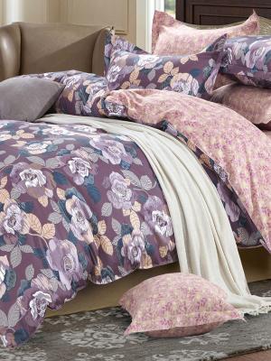 Постельное белье Primavelle. Цвет: бежевый, розовый, синий, фиолетовый