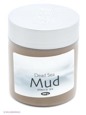 DrS Грязь Мертвого моря 800гр Dr. Sea. Цвет: серый