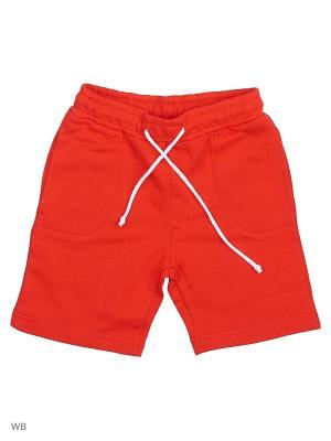 Трикотажные шорты Modis. Цвет: красный