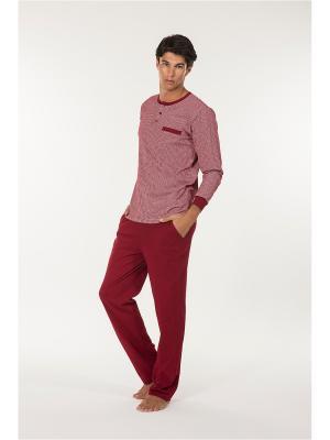 Пижама Kom. Цвет: бордовый