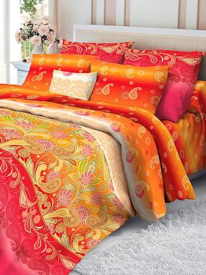 Комплект постельного белья Verossa. Цвет: оранжевый