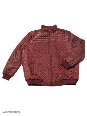 Куртка IFC. Цвет: бордовый