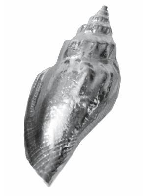 Средняя морская улитка Wentworth Pewter. Цвет: серебристый