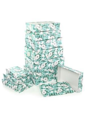 Набор из 10 картонных коробок 23*13*3-36,5*26,5*12см, Анаис VELD-CO. Цвет: светло-зеленый, салатовый