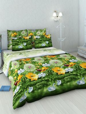 Комплект постельного белья из бязи Семейный Василиса. Цвет: зеленый
