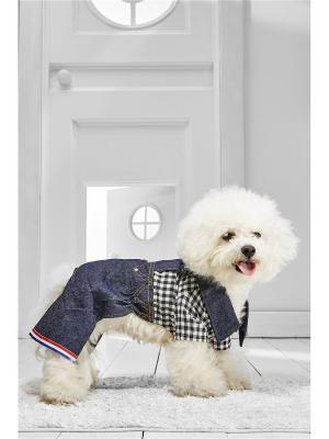 Комбинезон для собак Nothing but Love. Цвет: темно-синий, белый, черный