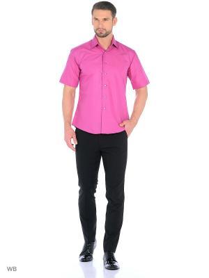 Рубашка CARAT.. Цвет: малиновый
