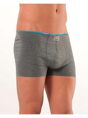 Мужские трусы Oztas underwear. Цвет: серый, голубой