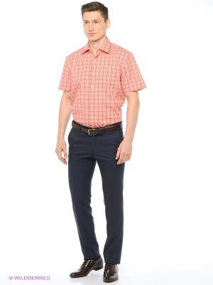 Рубашка мужская с коротким рукавом в клетку Mr. Marten. Цвет: коралловый