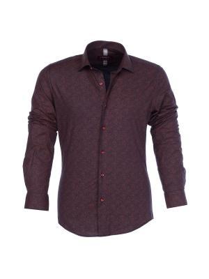 Рубашка BIRIZ. Цвет: бордовый
