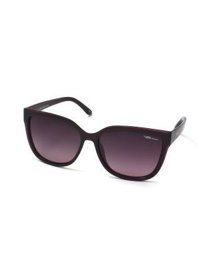 Солнцезащитные очки Legna. Цвет: фиолетовый