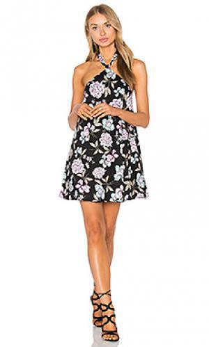 Платье violet Lucca Couture. Цвет: черный