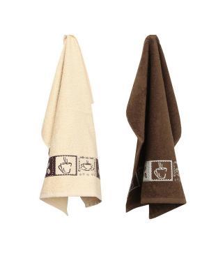 Набор махровых кухонных полотенец  2 шт ТекСтиль для дома. Цвет: бежевый, темно-коричневый