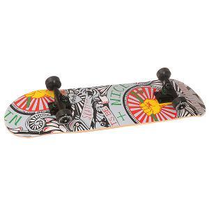 Скейтборд в сборе  Benice Multi 31 x 8 (20.3 см) Fun4U. Цвет: мультиколор