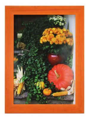 Фоторамка Сосна 15х20 Яркий Праздник. Цвет: оранжевый