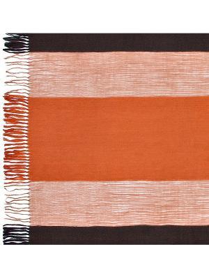Шарф Eleganzza. Цвет: темно-коричневый, оранжевый