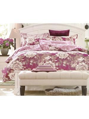 Комплект постельного белья, 1,5 спальный Sofi de Marko. Цвет: бордовый