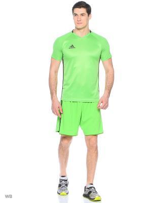 Спортивные шорты Adidas. Цвет: зеленый