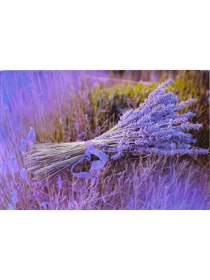 Доска Gift'n'Home. Цвет: фиолетовый, салатовый, сиреневый