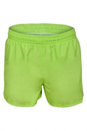 Shorts GWINNER. Цвет: green