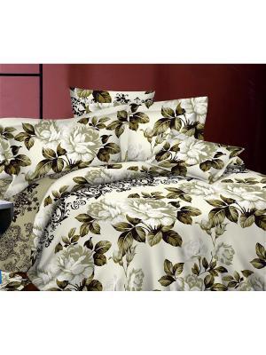 Комплект постельного белья 1,5сп, поплин BegAl. Цвет: оливковый