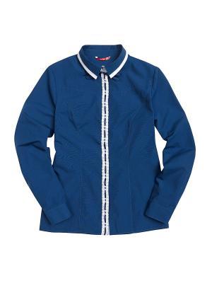 Рубашка PELICAN. Цвет: синий