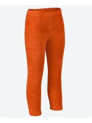 Леггинсы МИКИТА. Цвет: оранжевый