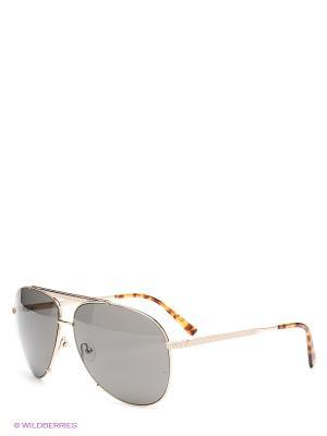 Солнцезащитные очки Enni Marco. Цвет: черный, золотистый