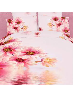 Постельное белье Pastoral 2,0 сп.Euro Buenas Noches. Цвет: розовый, персиковый