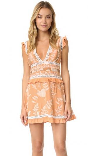 Мини-платье со вставками Mia For Love & Lemons. Цвет: персиковый