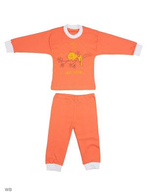 Пижамы Flip. Цвет: оранжевый