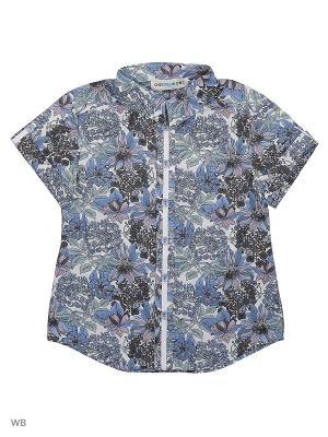 Рубашка One plus. Цвет: серый