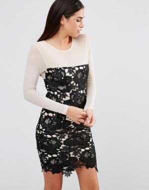 Girl In Mind Ажурное облегающее платье Frona. Цвет: черный