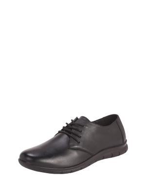 Ботинки Alessio Nesca. Цвет: черный