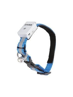 Ошейник светящийся Ziver 1,2х30см.. Цвет: голубой