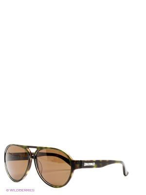 Солнцезащитные очки Salvatore Ferragamo. Цвет: коричневый