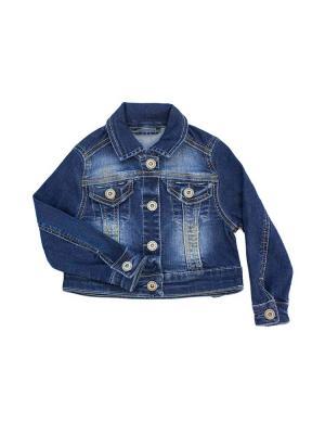 Куртка Goldy. Цвет: синий