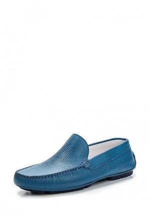 Мокасины Botticelli Limited. Цвет: голубой