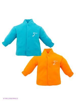 Кофточка, 2 шт. Лео. Цвет: голубой, оранжевый