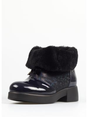 Ботинки TUFFONI. Цвет: черный, темно-синий
