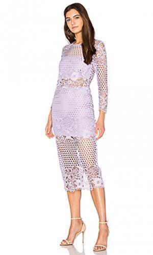 Кружевное платье shell Karina Grimaldi. Цвет: бледно-лиловый