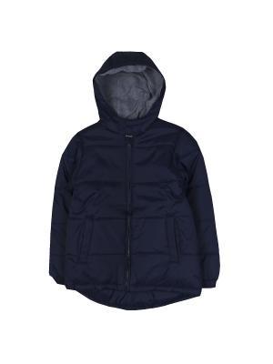 Куртка для мальчиков FOX. Цвет: темно-синий