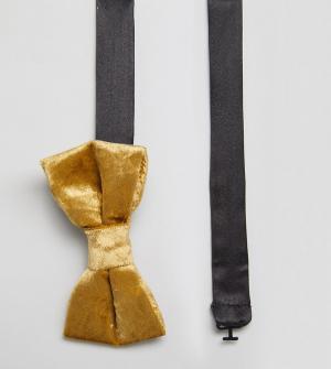 Noose & Monkey Бархатный галстук-бабочка. Цвет: золотой