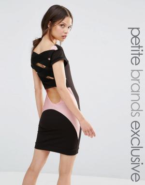 Quontum Petite Облегающее платье с сетчатыми вставками. Цвет: черный