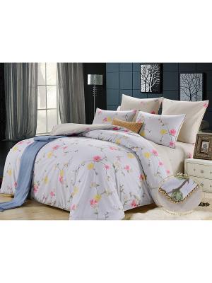 Комплект постельного белья, Молинаро, Семейный KAZANOV.A.. Цвет: голубой, серебристый