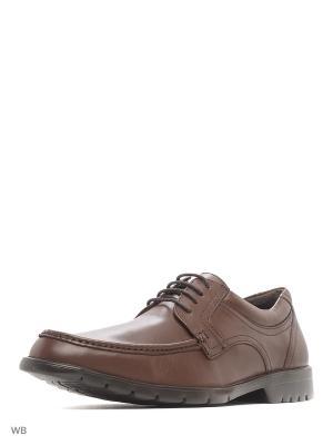 Ботинки WOODS. Цвет: коричневый