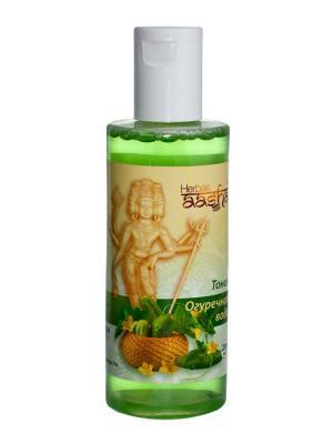 Тоник для лица Огуречная вода Aasha Herbals. Цвет: прозрачный