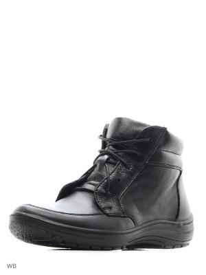 Ботинки Bebendorff. Цвет: черный